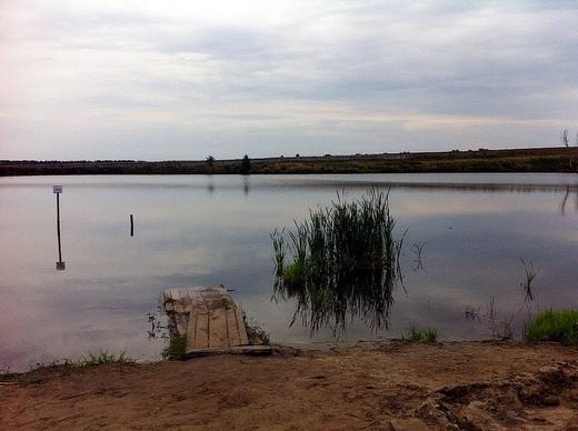 Гражданин Мордовии потонул напруду «УСемен Семеныча»